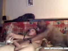 porno bear spy pornografia homo videos cams