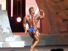 asian musclebull hide: 2013 arnold classic