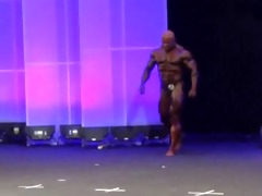 musclebull robert: arnold classic europe 2014
