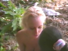 hawaii vice lesbo scene